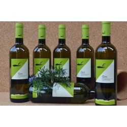 "RAPE' IGT Toscana Chardonnay 2013 ""Azienda Agricola EUCALIPTUS"""