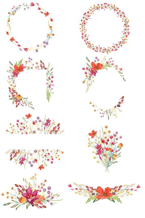Watercolor Wild Flowers Floral Frames Aquarelle Wild Flowers