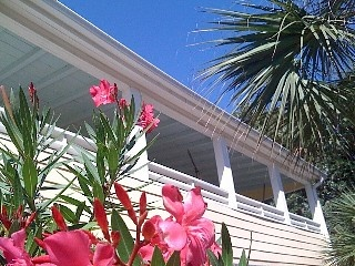 'Lamm's End Cottage' ..Beach, Tennis & Park..Pampered Retreat!: Vacation Rental, Folly Beach, Cottage, Rental Travel, Vacation Dreams, Charleston Rentals