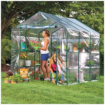 Village Green Deluxe Walk In Greenhouse with Shelves at Big Lots