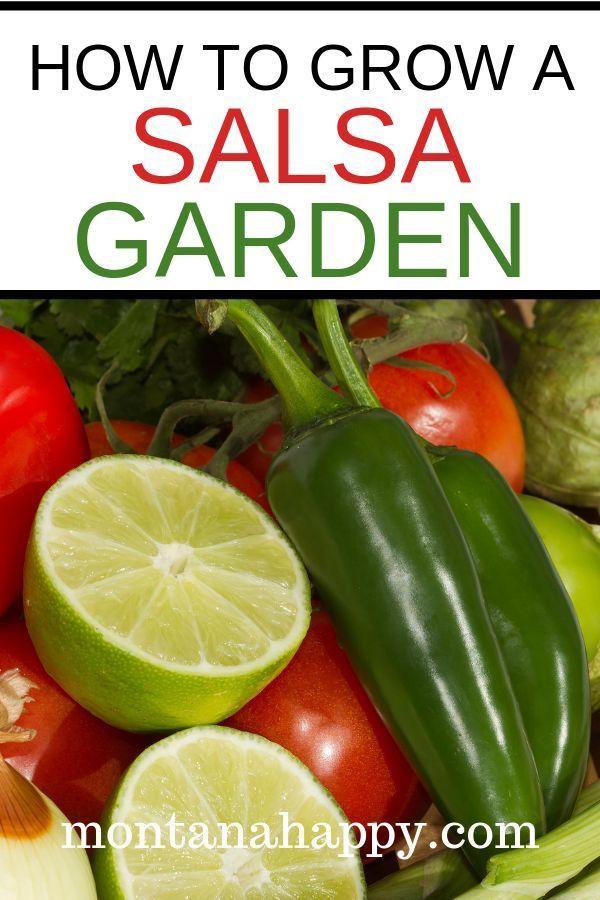 How To Start Small Vegetable Garden Home Vegetable Garden