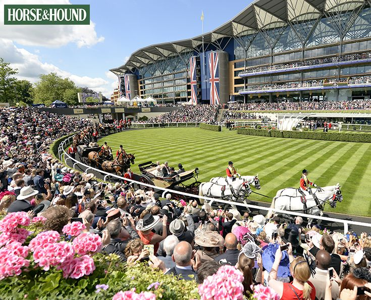 Looking forward to Royal Ascot this week? Find out how to watch all the action on TV and online with our useful guide.