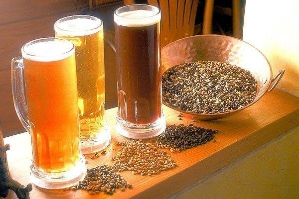 Cómo hacer cerveza artesanal - función de cada ingrediente