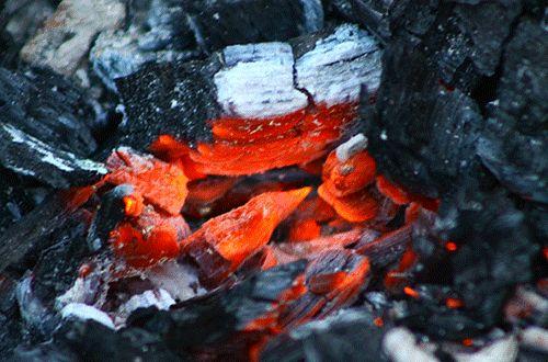 GIF любовь фотография хипстер Boho инди огонь природа