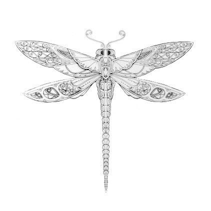 coloring pages Enchanted Forest dragonfly Google zoeken