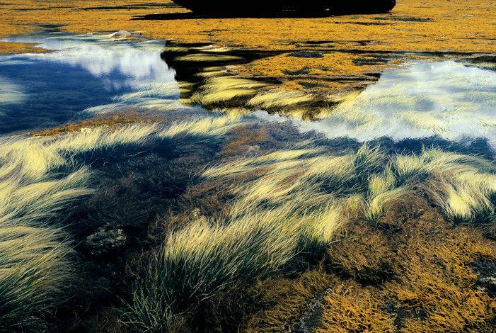 Famous Landscape Photographers - Takeshi Mizukoshi
