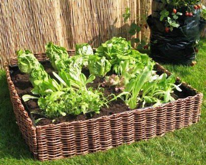 Complete Woven Willow Raised Bed Kit 48w x by Mastergardenproducts