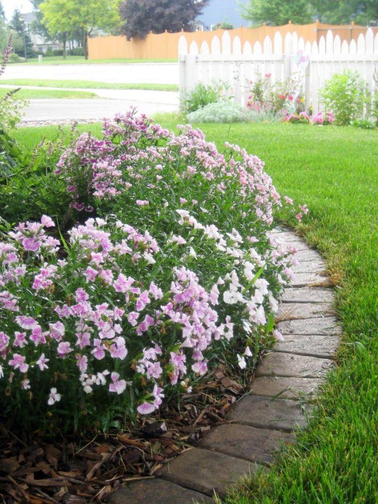 Flat stone edging option my garden pinterest for Flower edging