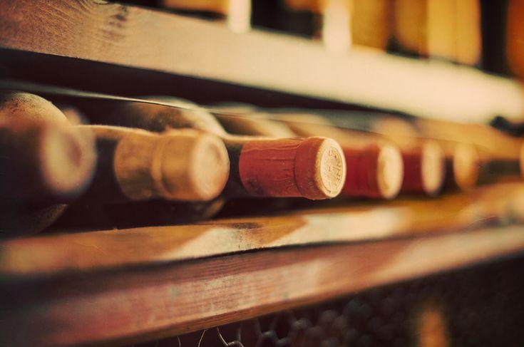 Wein lagern - Welche Weine können gelagert werden und wie? » Weinkarte