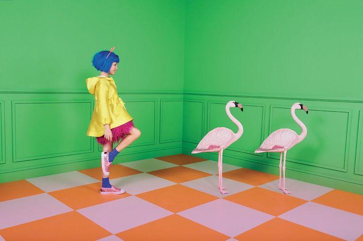 Pop Flamingo - Style Piccoli