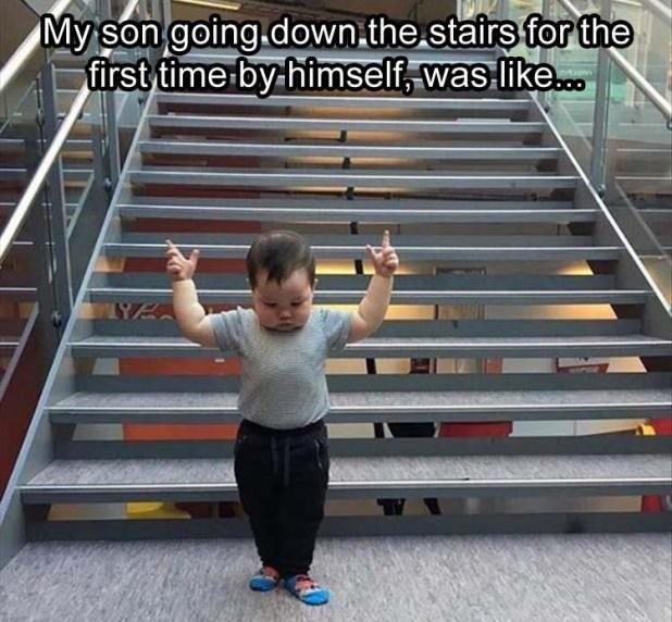 34 Funny Pics for Your Friday | Second Edition