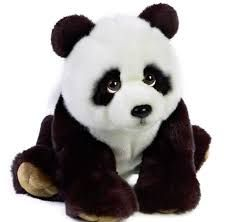 23 best Pandas images on Pinterest  Pandas Drawings and Kawaii