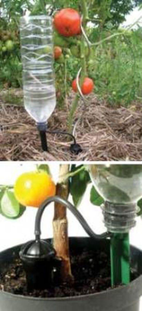 IRISO Drip Feed Bottle Watering System (4 Pack)