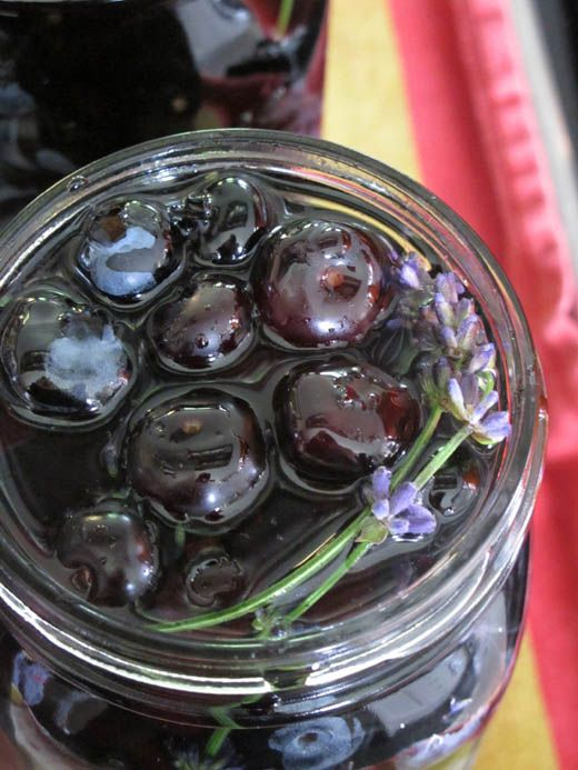 Canned Blueberries with Lavender