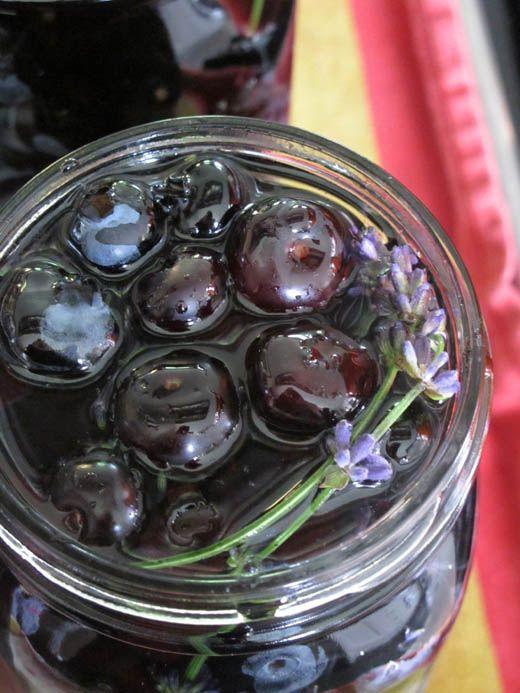 canning-blueberries-suvir 09