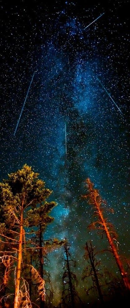 To stay up all night long watching a meteor shower!