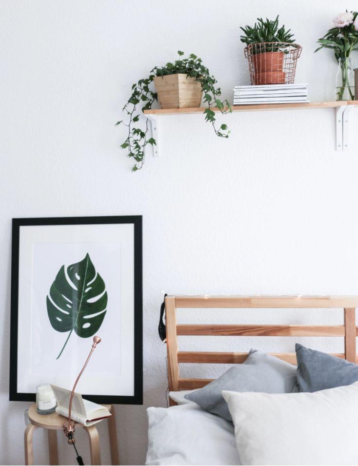 Wohnen | Einrichten | Deko | Pflanzen | Urban Jungle | Monstera | Print | Kunstdruck | Boho