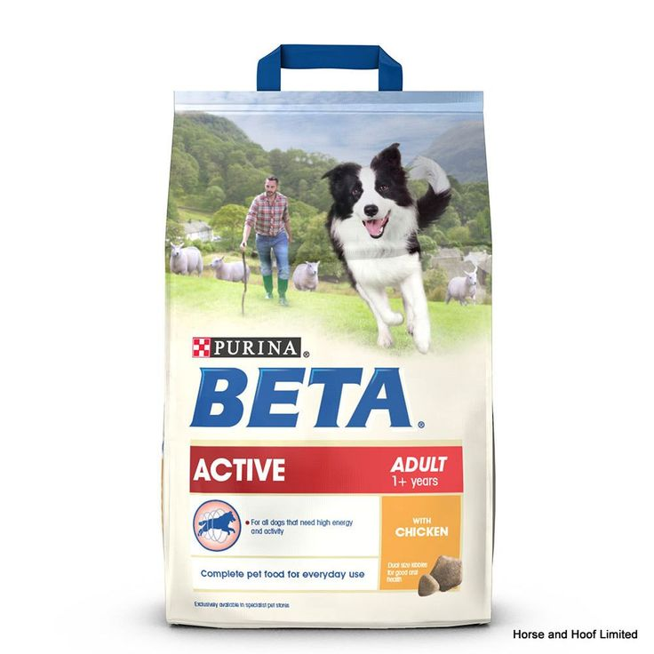 Beta Active Adult With Chicken Beta Active Adult with Chicken is a complete diet designed for dogs that like to live life at a frantic pace The food is able to provide highly active dogs with the proteins and fats they need to replenish energy stores and recover sufficiently before the next days work