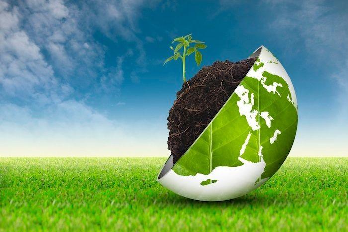 Buone pratiche di sostenibilità di impresa: lezioni per la crescita