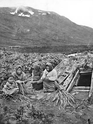 Aleut women on Attu Island preparing wild rye grass for weaving - 1909
