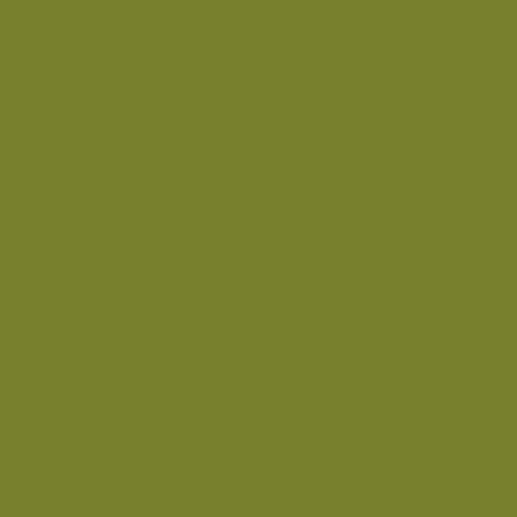 Little Greene | Citrine (71)