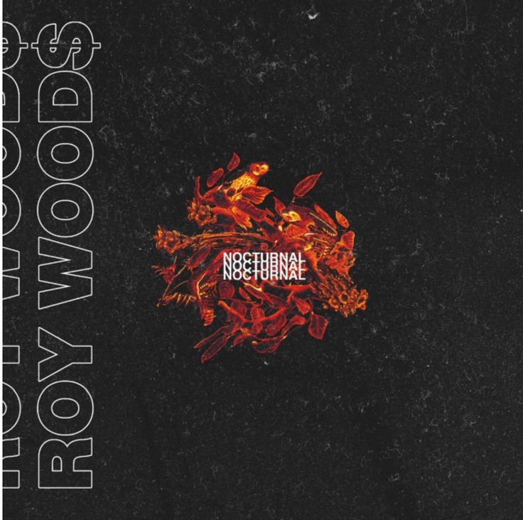 Toronto-based OVO artist Roy Woods just surprised fans with the release of his new EP Nocturnal. Listen to Roy Woods Nocturnal Stream HERE via bdhh.
