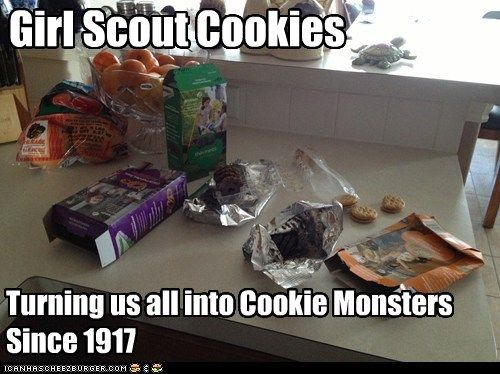 girl scout cookie meme   Girl Scout Cookies - Cheezburger