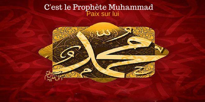 Le #Prophète #Muhammad  (Paix sur lui) était le prophète dernier envoyé par #Dieu. Il y a beaucoup d'évidence de sa véracité. Cette section montrera quelque évidence que le Prophète Muhammad (Paix sur lui) est vraiment envoyé venant de Dieu avec le message de l'Islam. Le Statut de l'Arabie Avant L'Islam La meilleure description du statut …