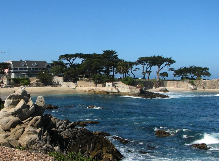 pacific grove mature singles Single story homes for sale in pacific grove, ca | salinas ca homes for sale and real estate nanette losada specializes in homes and listings, representing both home buyers and home sellers.