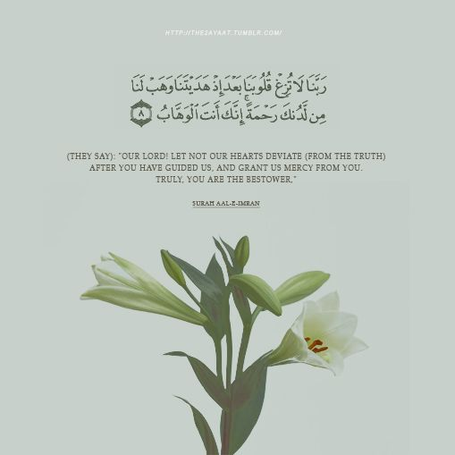 "[Who say], ""Our Lord, let not our hearts deviate after You have guided us and grant us from Yourself mercy. Indeed, You are the Bestower"