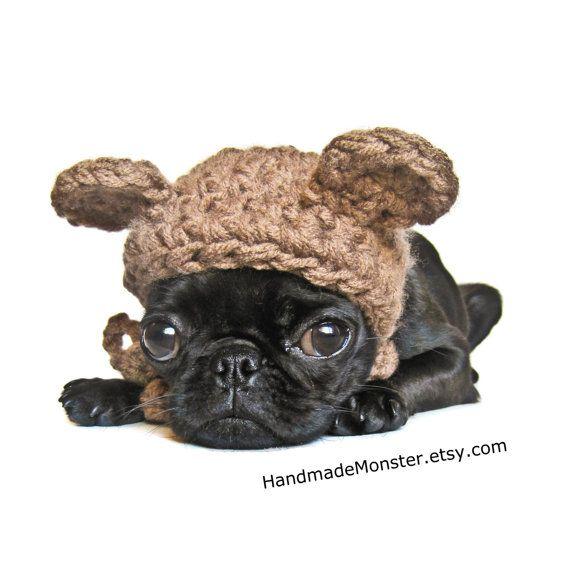 Ewok Hat: 1000+ Ideas About Ewok Dog Costume On Pinterest