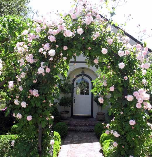 как сделать красивые арки из роз своими руками