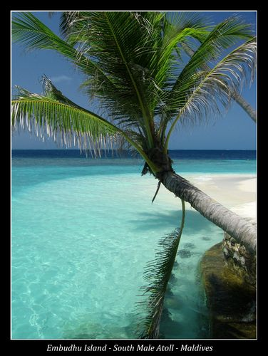 Paradise Island in Male Island, Maldives. | Natural Creations