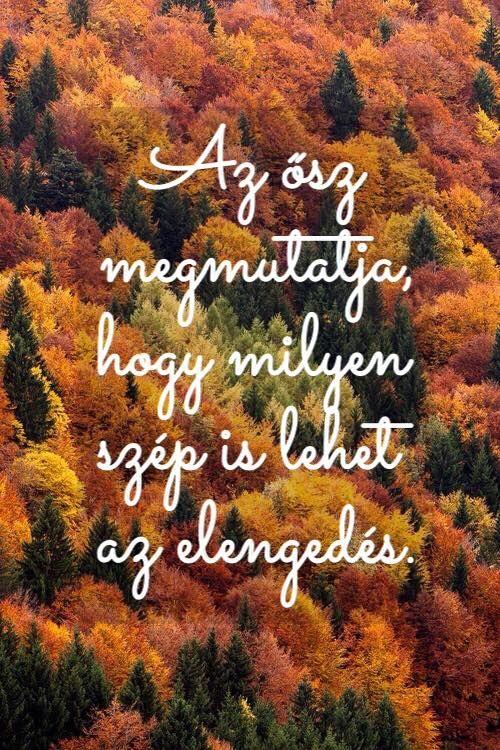 Az ősz....