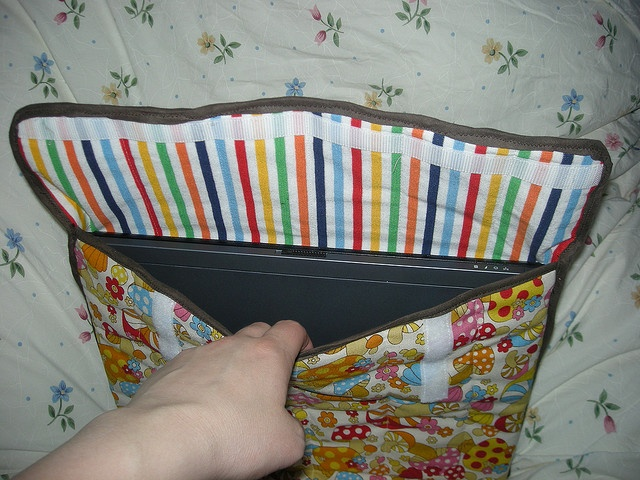 laptop sleeve - lining. I think that they are very mobile...