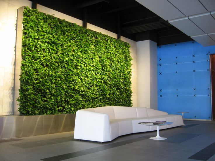 green wall office. delighful wall this would be amazing to have in the office reception green wall  office  space pinterest walls reception and walls for