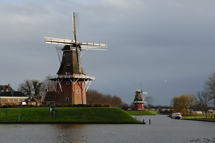 De twee molen die Dokkum nog heeft. De Zeldenrust en De Hoop