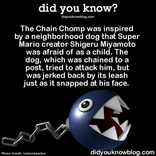 Shigeru Miyamoto's inspiration for the Chain Chomps was from a childhood experience: a dog once ran up to him and tried to bite him, but the dog's chain held it back. As a result, Chain Chomps also possess canine qualities, such as barking and are commonly used as guard dogs throughout the Mario series. Chain Chomps were originally created as an enemy for The Legend of Zelda series, but ended up being used for the Mario series first.