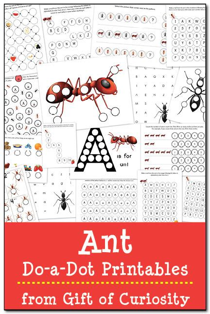 Ant do-a-dot printables with 17 pages of learning activities for kids ages 2-5. #DoADot #handsonlearning #ants    Gift of Curiosity