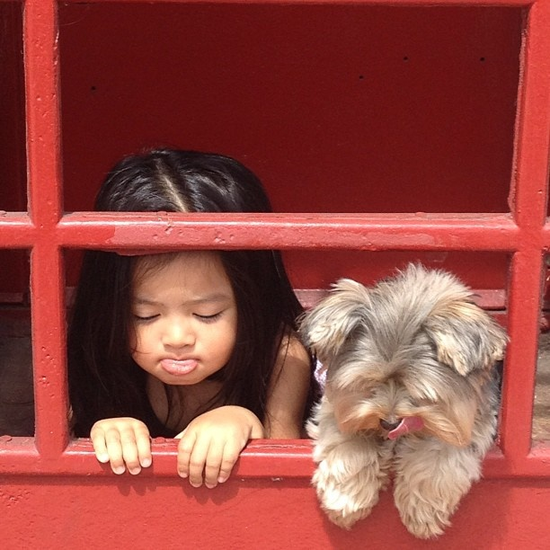 :P: Dogs Girls, Les Adorable, Puppies, Children, Friends Memories, Friends Friends, Awebest Friends, Kid, Animal