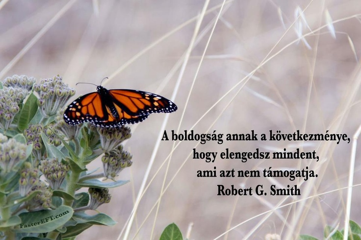 Robert G. Smith gondolata az elengedésről. A kép forrása: FasterEFT Magyarország