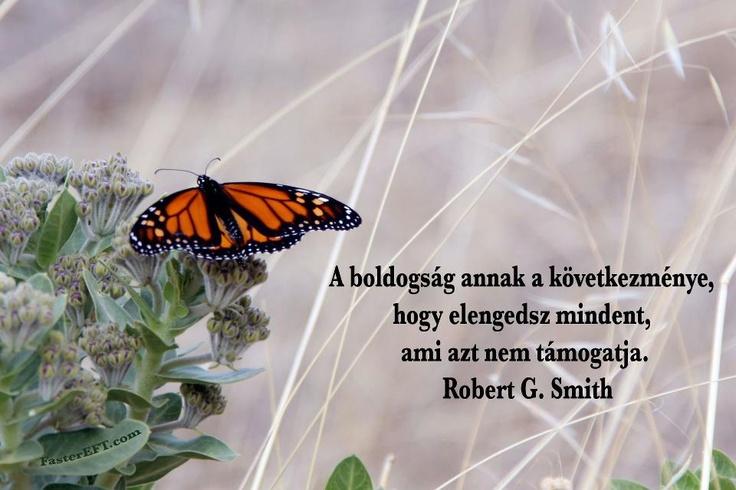 """""""A boldogság annak a következménye, hogy elengedsz mindent, ami azt nem támogatja."""" (Robert G. Smith) - A kép forrása: FasterEFT Magyarország # Facebook"""