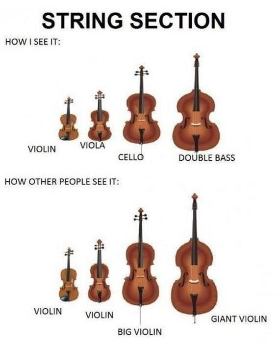 This is so true!!! I say 'I'm learning to play viola' and the person says 'Oh, that bigger violin?' Or 'Oh, that violin that you have to play sitting down that's really big?' Or even 'That one violin that's so big you have to play standing up?'