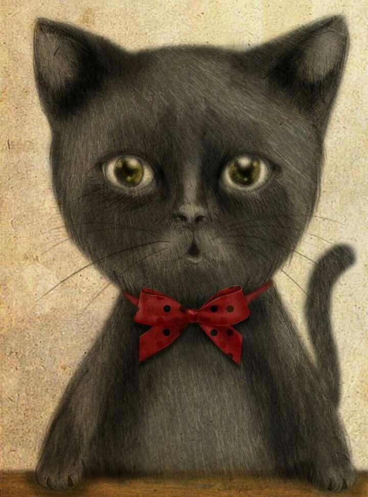 black cat illustration pencil and digital