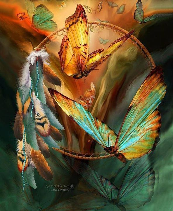 1101 Best Images About Native American Art On Pinterest: 17 Best Images About Morning Star / Native American On