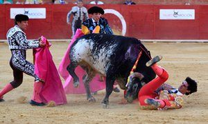 Spanish bullfighter Victor Barrio, 29, is gored in Teruel.
