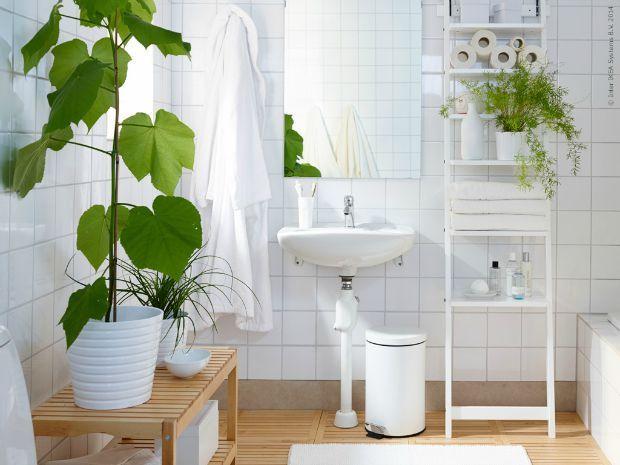 29 best Planten in de badkamer images on Pinterest   Bathroom, Half ...