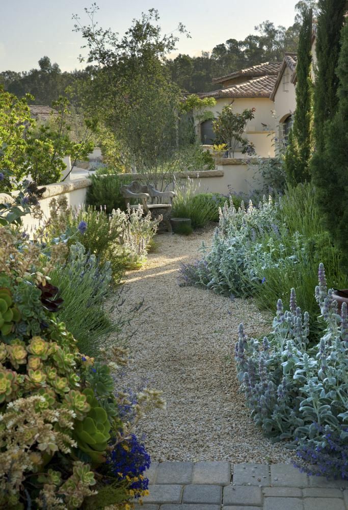 Mediterranean Garden Design Image Mesmerizing Design Review
