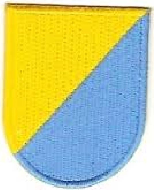 8TH SPECIAL FORCES GROUP