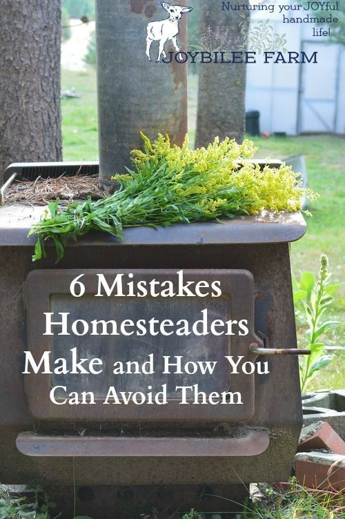 Having a homestead, raising your own food, ensuring that your animals are fed wholesome, GMO free feed which then will nourish you, is an extremely satisfying lifestyle. With some foresight you can avoid many of the mistakes that cripple a homestead venture and cause unhappiness, sending the defeated homesteader back to the city, broke and wounded. The following 6 mistakes can be avoided with a little planning to ensure that your homestead is a blessing to you and your family for many years…